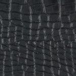 WCAI99 BLACK
