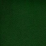 PEM9207 GREEN