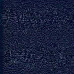 SXS5251 BLUE