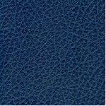 SXS5299 BLUE