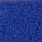 WSA51 ROYAL BLUE
