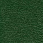 SXS5302 GREEN